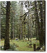 An Old Cemetary In A Forest Acrylic Print by Taylor S. Kennedy