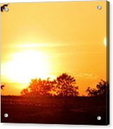 Photograph Of The White Hot Sun On An Orange Horizon With Lens Flare Acrylic Print