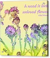 An Unloved Flower Acrylic Print