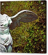 Ancient Flight Acrylic Print by Nichole Leighton