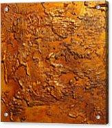 Ancient Treasure 2 Acrylic Print