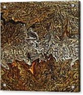 Ancient Wood Acrylic Print