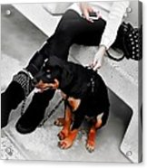 And Here's Me Out With A Supermodel. Acrylic Print