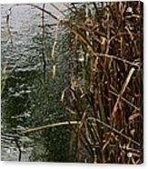 And The River Flows Acrylic Print