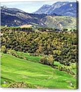 Andalusia Landscape Acrylic Print