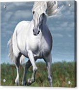 Andalusian Freedom Acrylic Print by Suni Roveto
