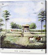 Andrew Jackson: Hermitage Acrylic Print