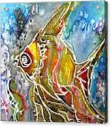 Angel Fish Acrylic Print by M C Sturman