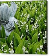 Angel In The Lilies Acrylic Print