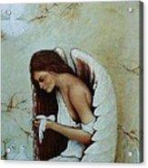 Angel Acrylic Print by Steven Wood
