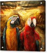 Animal - Parrot - Parrot-dise Acrylic Print