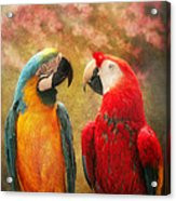 Animal - Parrot - We'll Always Have Parrots Acrylic Print