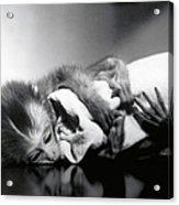 Animal Research Acrylic Print