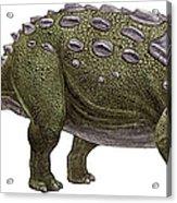 Ankylosaurus Magniventris Acrylic Print