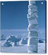 Antarctic Snowman Acrylic Print