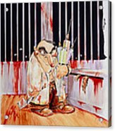 Anti-vivisectionist Caricature Of A Scientist Acrylic Print by David Gifford