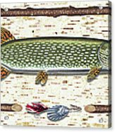 Antique Birch Pike And Lure Acrylic Print by JQ Licensing