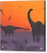 Apatosaur Dinosaurs, Artwork Acrylic Print