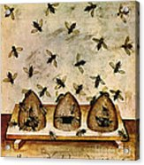 Apiculture-beekeeping-14th Century Acrylic Print by Science Source