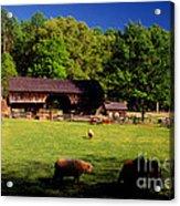 Appalachian Barn Yard Acrylic Print