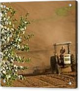 Apple Blossoms And Farmer On Tractor Acrylic Print