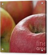 Apples To Apples Acrylic Print