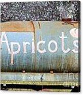 Apricots Acrylic Print