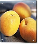 Apricots Acrylic Print by Veronique Leplat