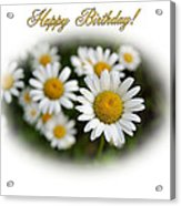 April Birthday Acrylic Print