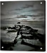 Aquatic Pathway Acrylic Print