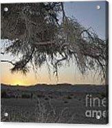Aravah Desert Landscape  Acrylic Print