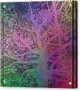 Arboreal Mist 1 Acrylic Print