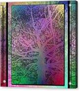 Arboreal Mist Trilogy Acrylic Print