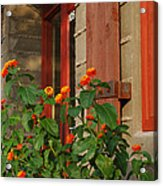 Architectural Detail 2 Acrylic Print