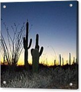 Arizona Desert Sunset Acrylic Print