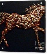 Arizona Fire Horse Acrylic Print