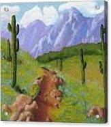 Arizona Trails Acrylic Print
