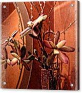 Arrangement In Mirror Acrylic Print