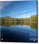Arrowhead Reflection Acrylic Print