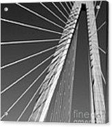 Arthur Ravenel Jr.bridge Acrylic Print