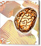 Artificial Intelligence, Computer Artwork Acrylic Print
