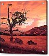 Ashland Sunset Acrylic Print