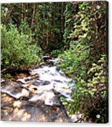 Aspen Stream Acrylic Print