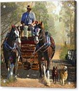 At Durdidwarrah Crossing Acrylic Print by Trudi Simmonds