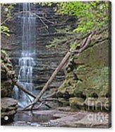 At The Falls Acrylic Print
