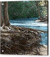 At Water's Edge Acrylic Print