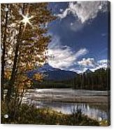 Athabasca River With Mount Fryatt Acrylic Print