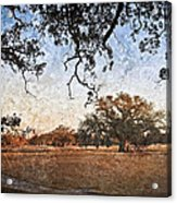 Audubon Golf Course Acrylic Print by Ray Devlin