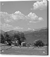 August Hay 75th  St Boulder County Colorado Black And White  Acrylic Print