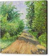 August Lane Acrylic Print
